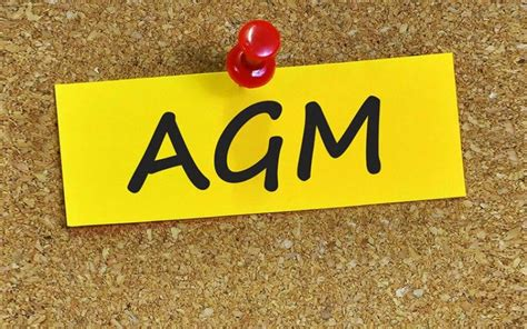 AGM Pin up.jpg